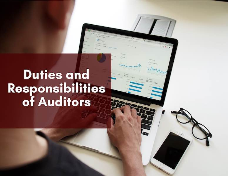 Duties and Responsibilities of Auditors in relation to the Company's Financial Statements and Accounting Records