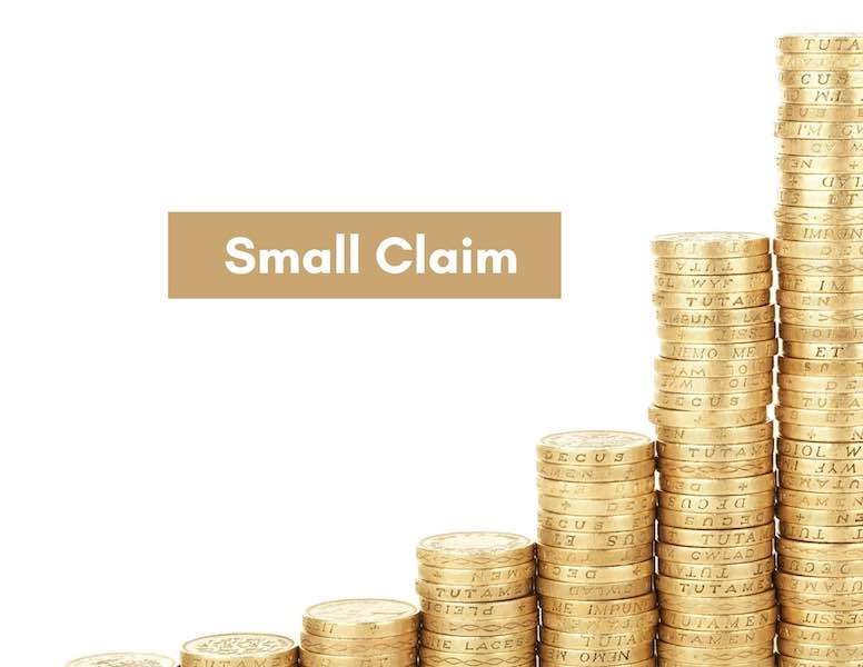 Small Claims: No Lawyers Needed!